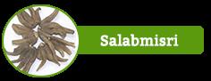 Salabmisri