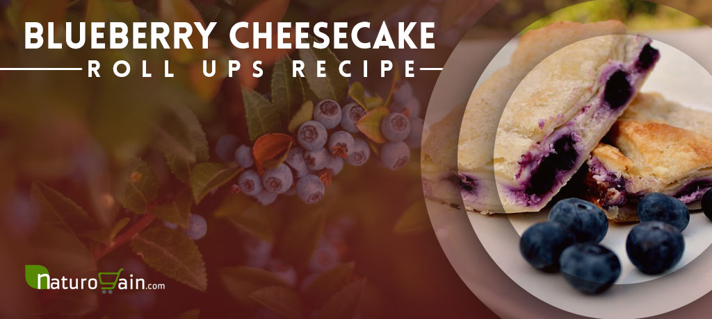 Blueberry Cheesecake Roll Ups Recipe