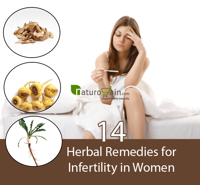 Herbal Remedies for Infertility in Women