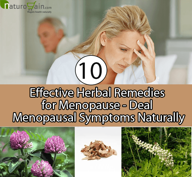 Herbal Remedies for Menopause