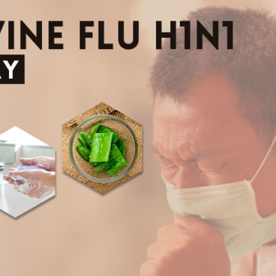 Keep Swine Flu H1N1 Virus Away