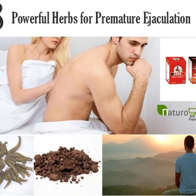 Herbs for Premature Ejaculation
