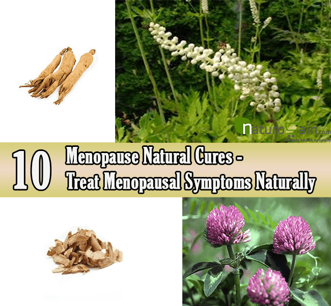 Menopause Natural Cures
