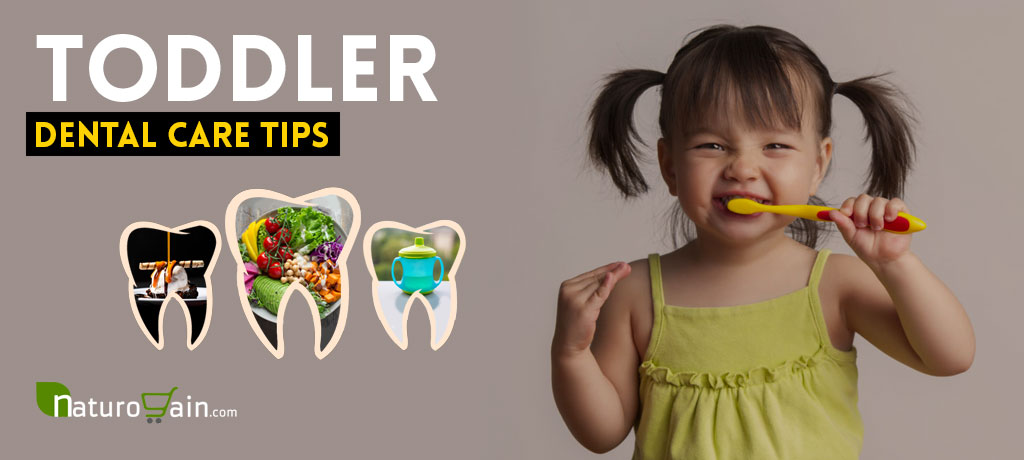 Toddler Dental Care Tips