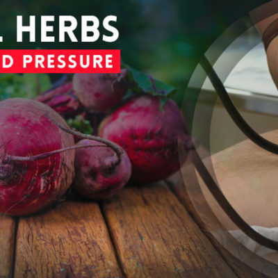Herbs for Low Blood Pressure