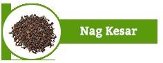 Nag Kesar