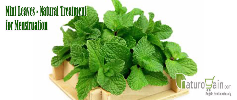 Mint Leaves Natural Treatment for Menstruation