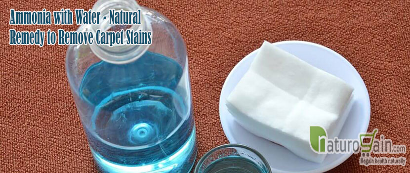 Natural Remedy to Remove Carpet Stains