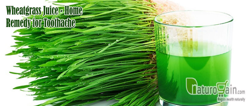 Wheatgrass Juice Remedy for Toothache
