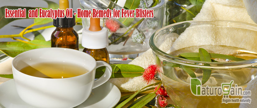 Remedy for Fever Blisters