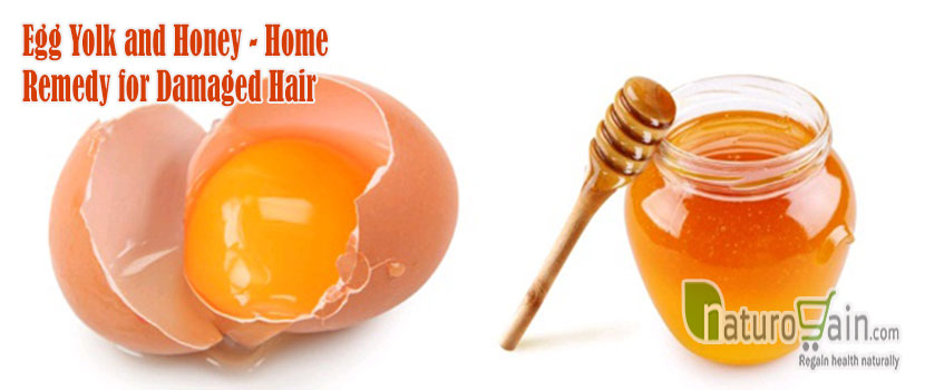 Home Remedy for Damaged Hair