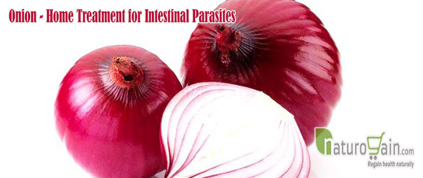 Home Treatment for Intestinal Parasites