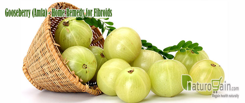 Remedy for Fibroids