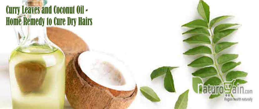 Remedy to Cure Dry Hairs