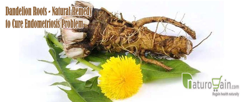 Remedy to Cure Endometriosis