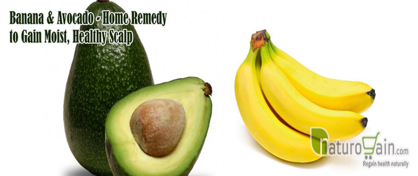 Remedy to Gain Moist Healthy Scalp