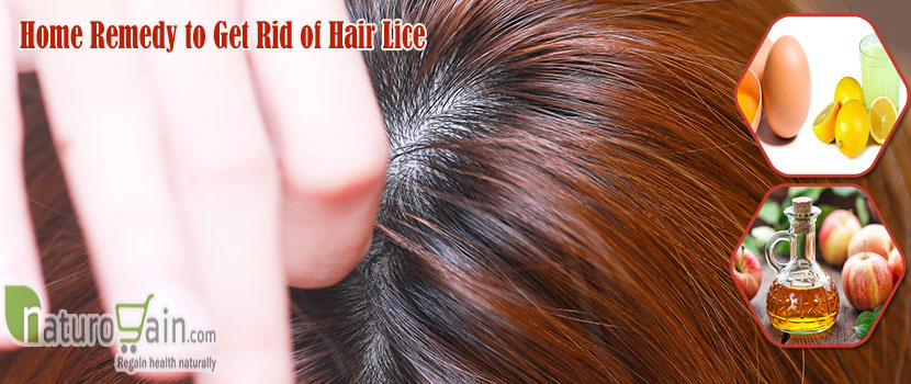 Remedy to Get Rid of Hair Lice
