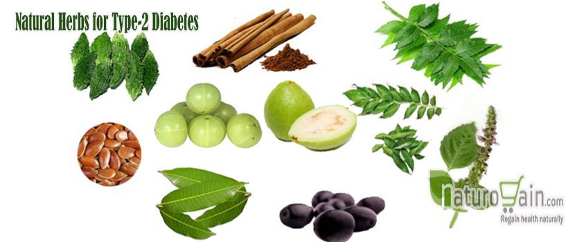Natural Herbs to Type 2 Diabetes