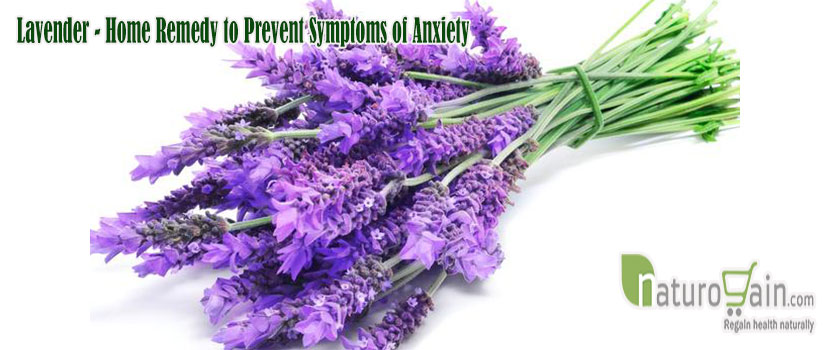 Remedy to Prevent Symptoms of Anxiety