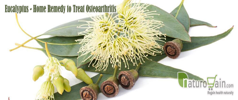 Remedy to Treat Osteoarthritis