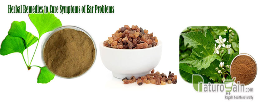 Herbal Remedies to Cure Symptoms of Ear Problems