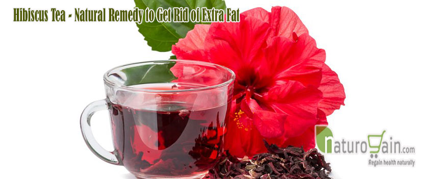 Hibiscus Tea