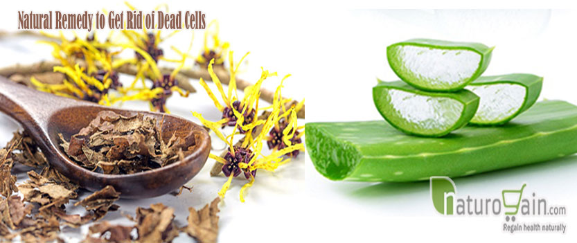 Natural Remedy to Get Rid of Dead Cells
