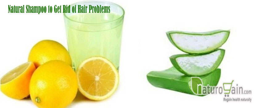 Shampoo to Get Rid of Hair Problems