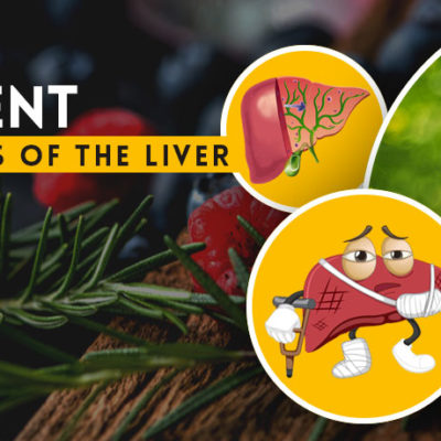 Herbal Treatment for Cirrhosis of the Liver