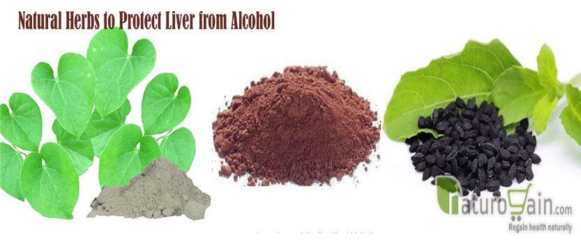Herbs to Protect Liver