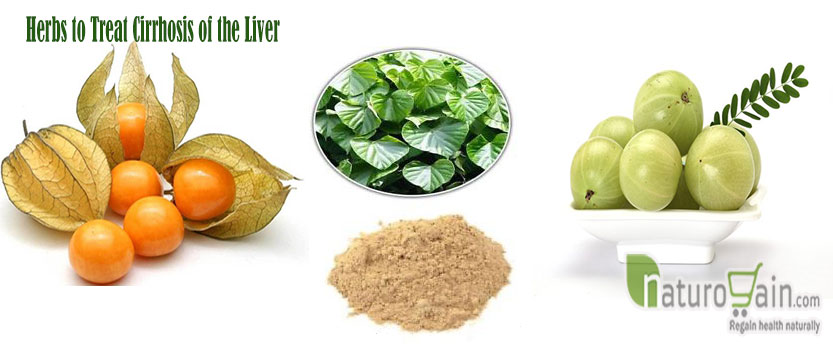 Herbs to Treat Cirrhosis of the Liver