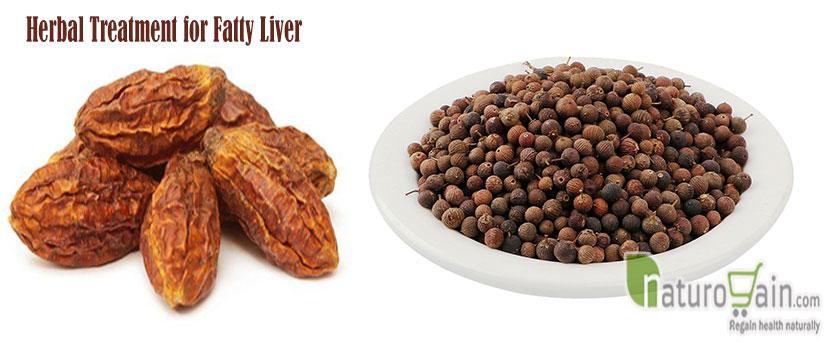 Treatment for Fatty Liver